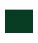 Zielony (600505)